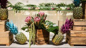 A tropical geometric baptism RPS EVENTS 5